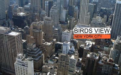 birds view - new york city