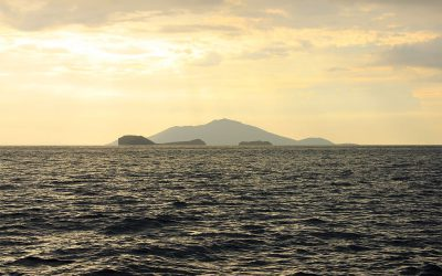 Insel in Sicht