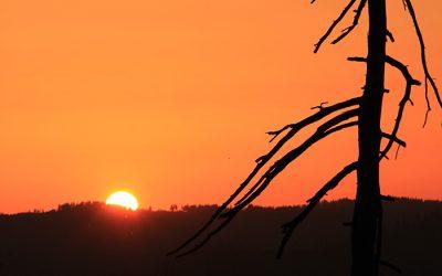 Sonnenuntergang im Yosemite Nationalpark