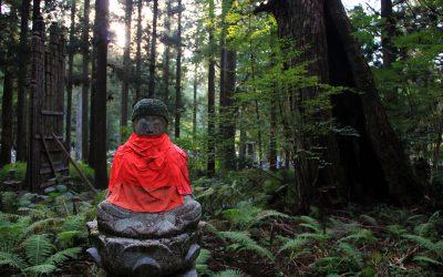 Im Zedernwald von Okunoin