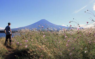 Im Bann von Mt Fuji