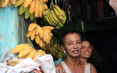 unsere Bananenhändler von nebenan