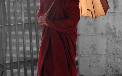 Sind allgegenwärtig: Mönche in Myanmar