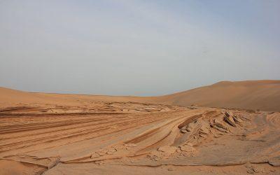 Einsame Wüsten