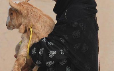 Beduinen-Frau mit traditioneller Maske